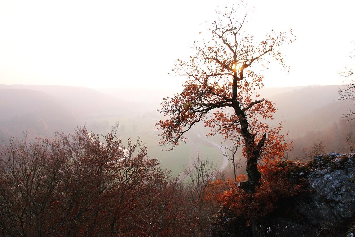 Esref Yilmaz_Fotografie